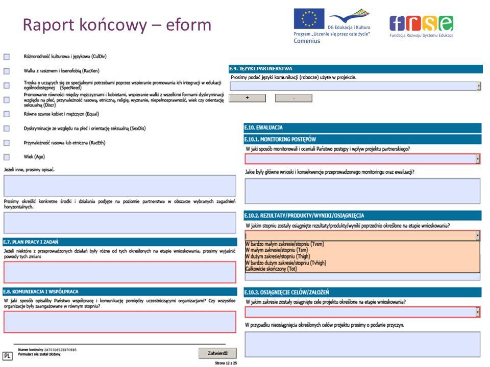 Raport końcowy – eform PROGRAM COMENIUS