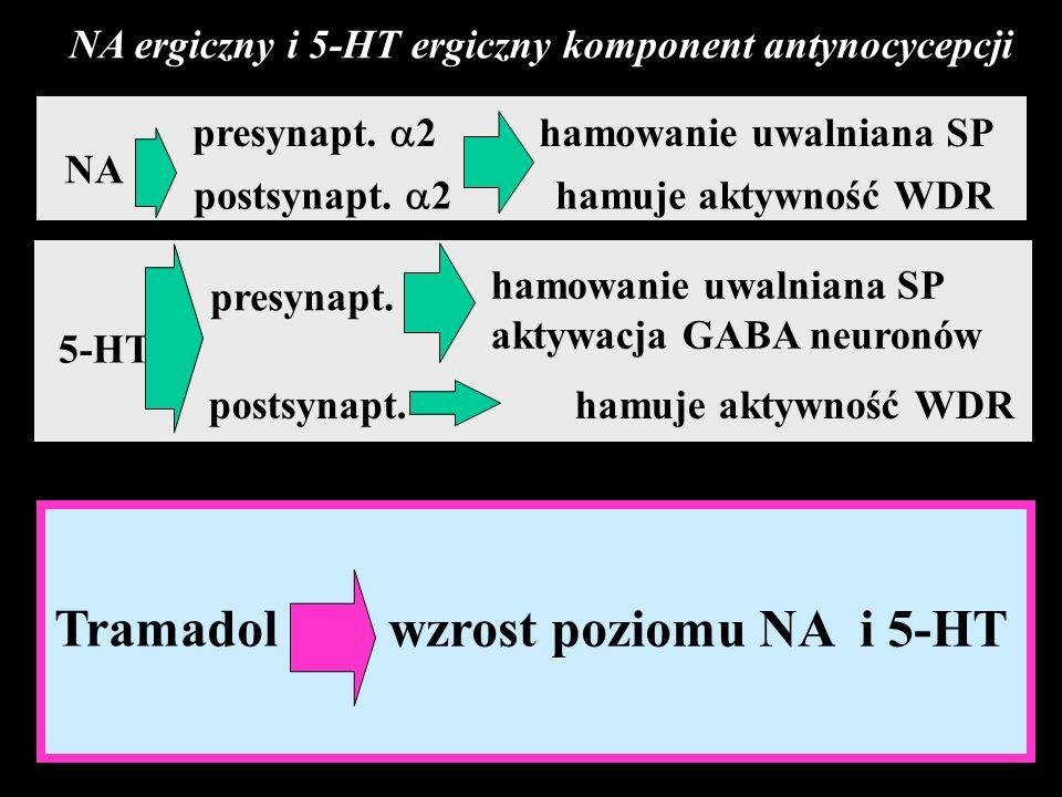 NA ergiczny i 5-HT ergiczny komponent antynocycepcji