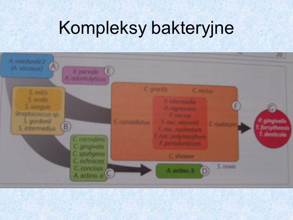 Kompleksy bakteryjne