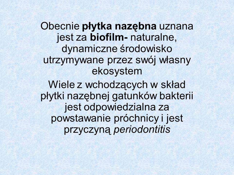 Obecnie płytka nazębna uznana jest za biofilm- naturalne, dynamiczne środowisko utrzymywane przez swój własny ekosystem