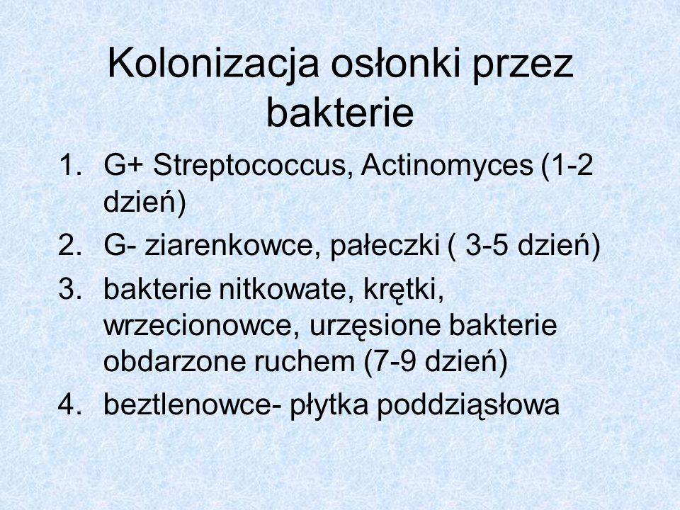 Kolonizacja osłonki przez bakterie