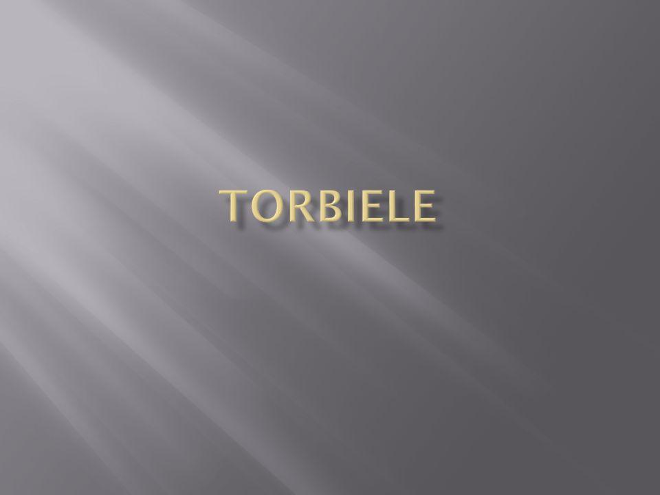 Torbiele