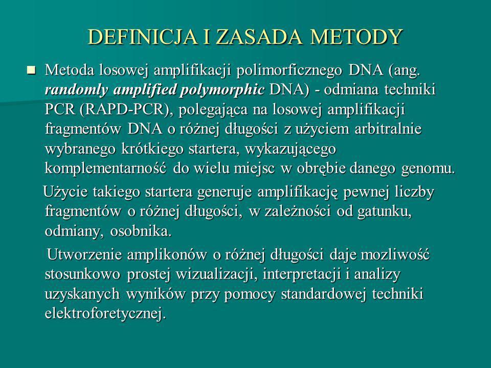 DEFINICJA I ZASADA METODY