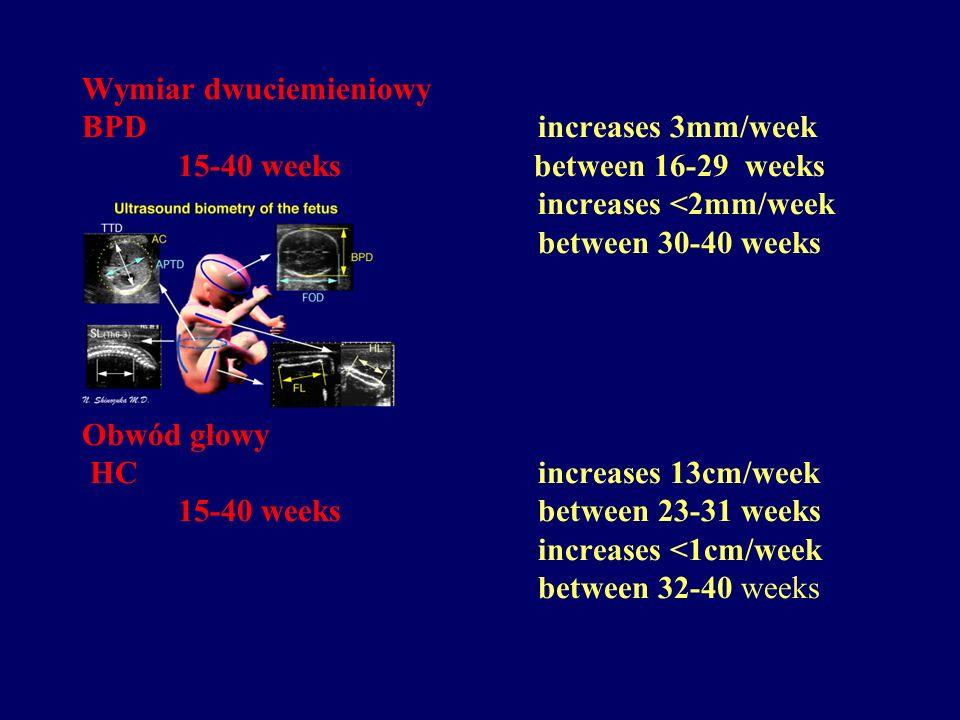 Wymiar dwuciemieniowy BPD increases 3mm/week