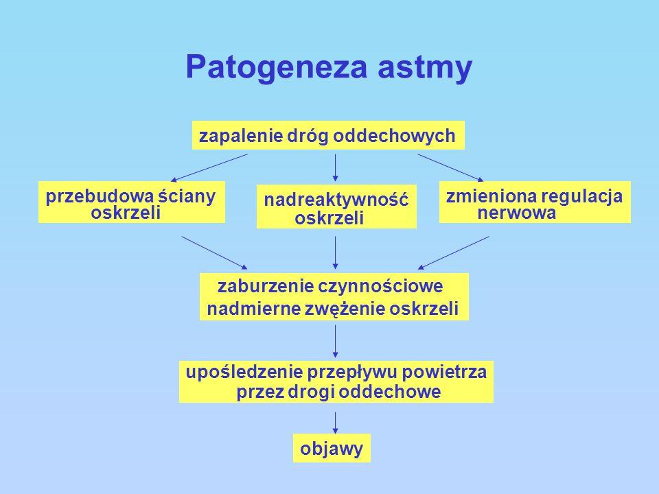 Patogeneza astmy zaburzenie czynnościowe zapalenie dróg oddechowych
