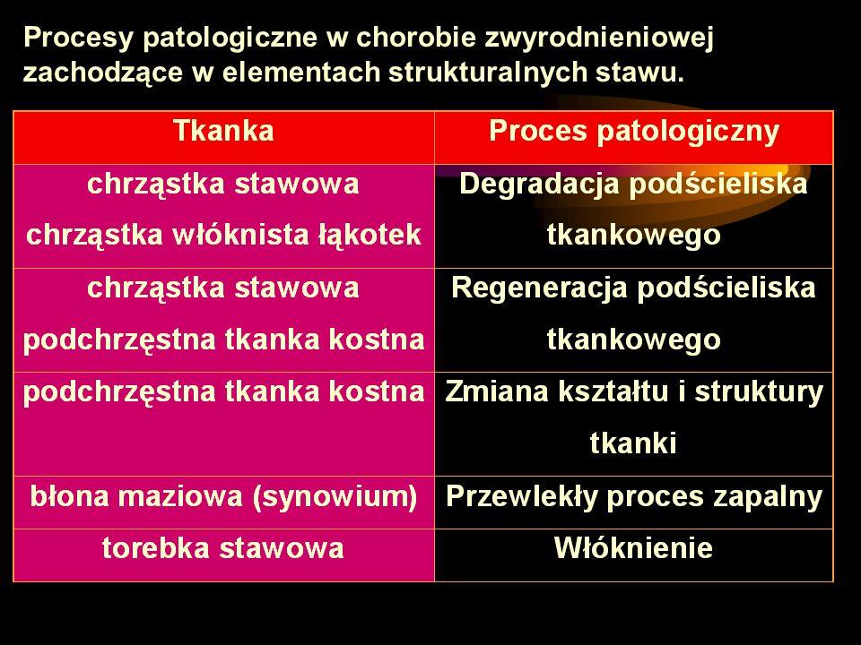 Procesy patologiczne w chorobie zwyrodnieniowej zachodzące w elementach strukturalnych stawu.