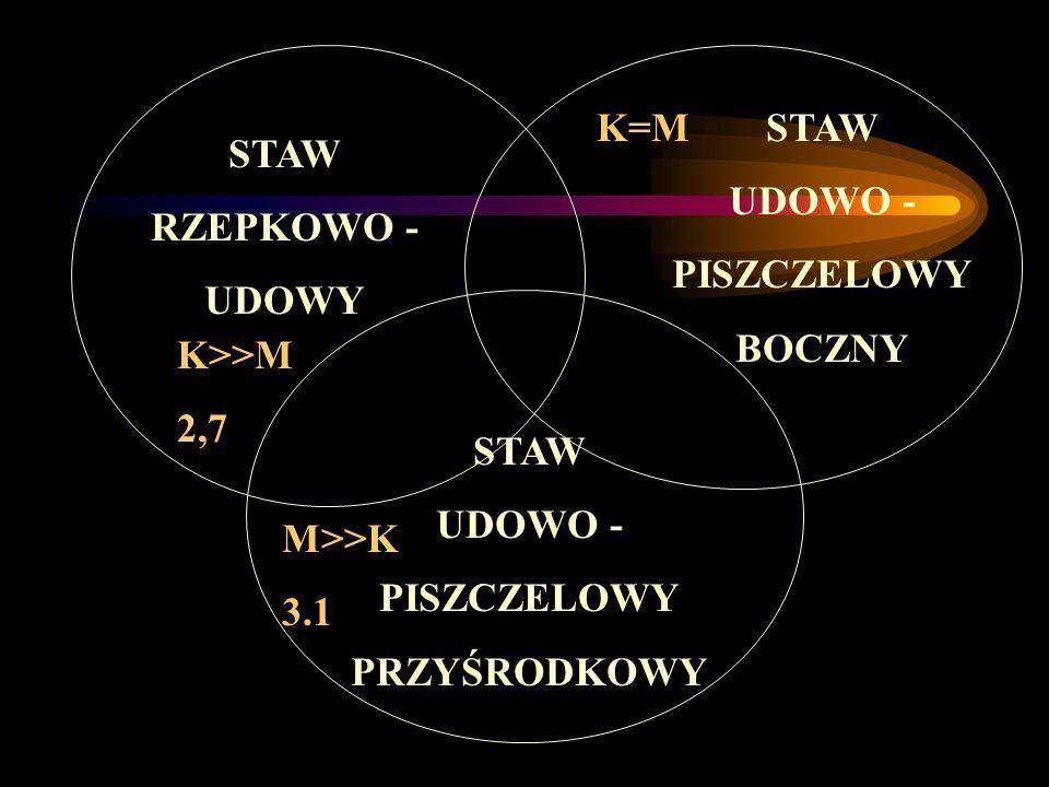 STAW RZEPKOWO - UDOWY UDOWO - PISZCZELOWY BOCZNY PRZYŚRODKOWY K>>M 2,7 M>>K 3.1 K=M