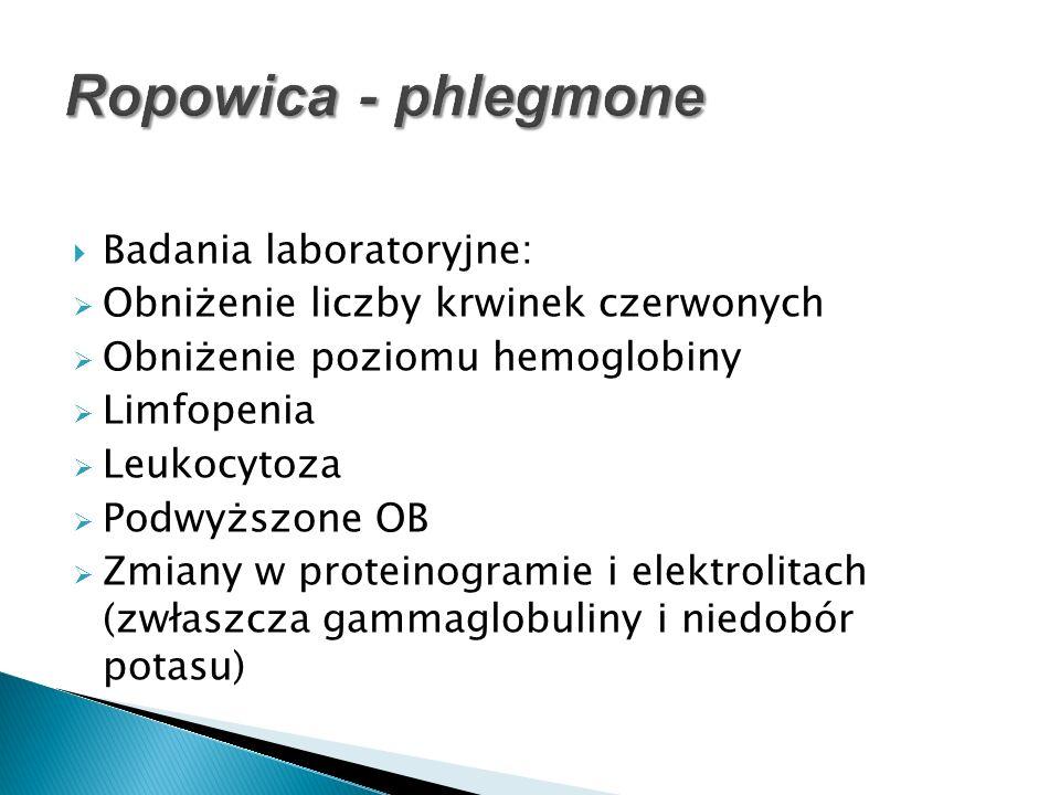 Ropowica - phlegmone Badania laboratoryjne: