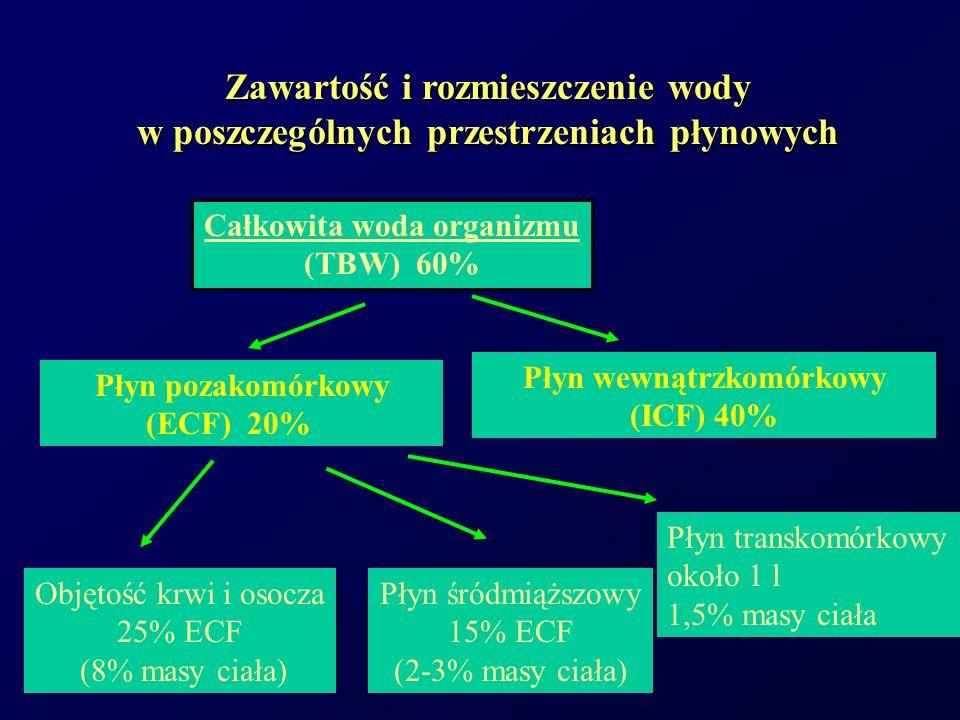 Objętość krwi i osocza 25% ECF. (8% masy ciała) Zawartość i rozmieszczenie wody w poszczególnych przestrzeniach płynowych.