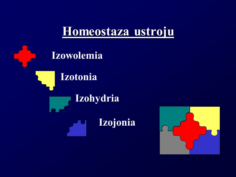 Homeostaza ustroju Izowolemia Izotonia Izohydria Izojonia