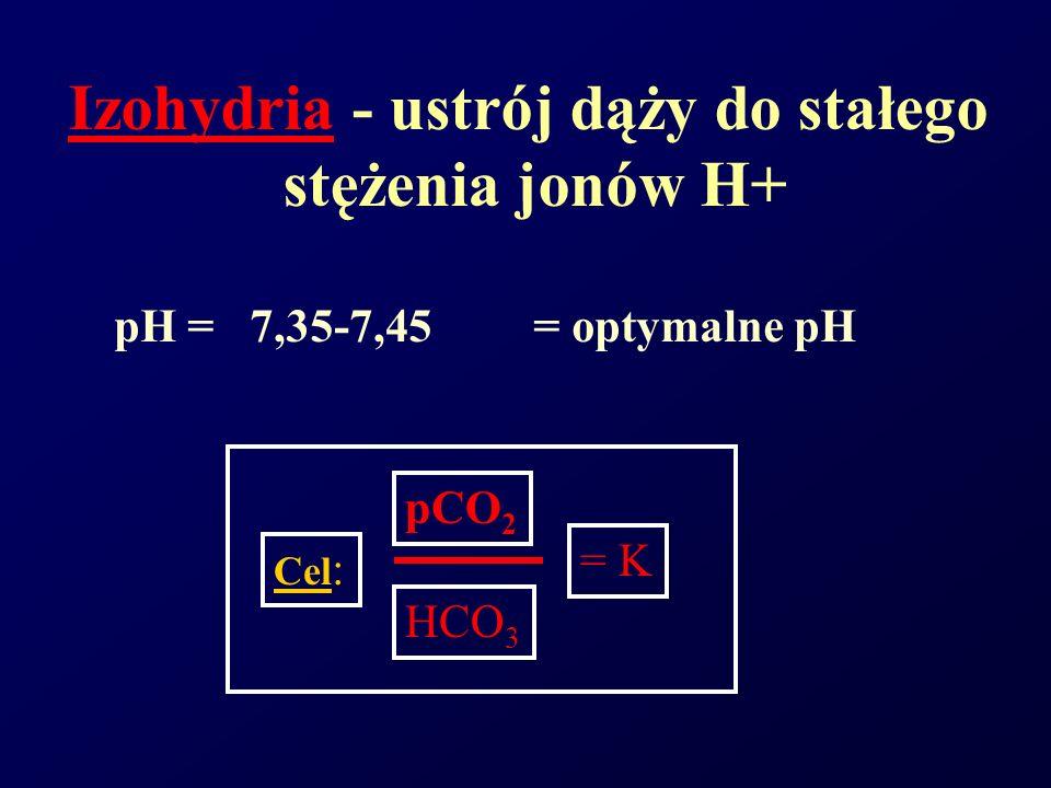 Izohydria - ustrój dąży do stałego