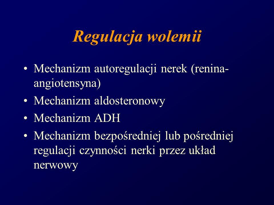 Regulacja wolemii Mechanizm autoregulacji nerek (renina-angiotensyna)