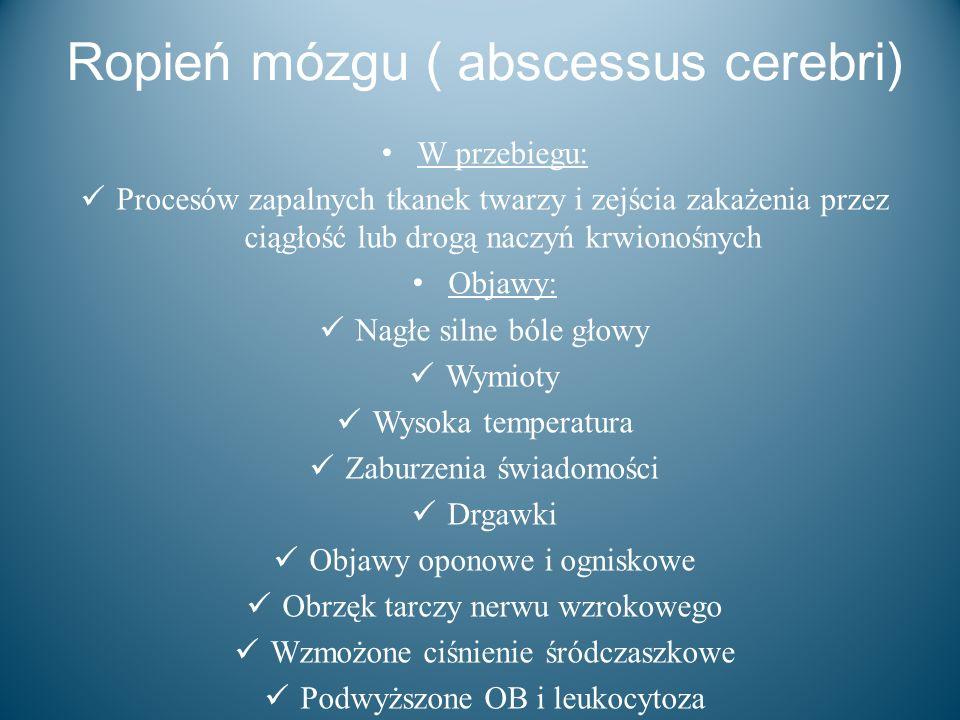 Ropień mózgu ( abscessus cerebri)