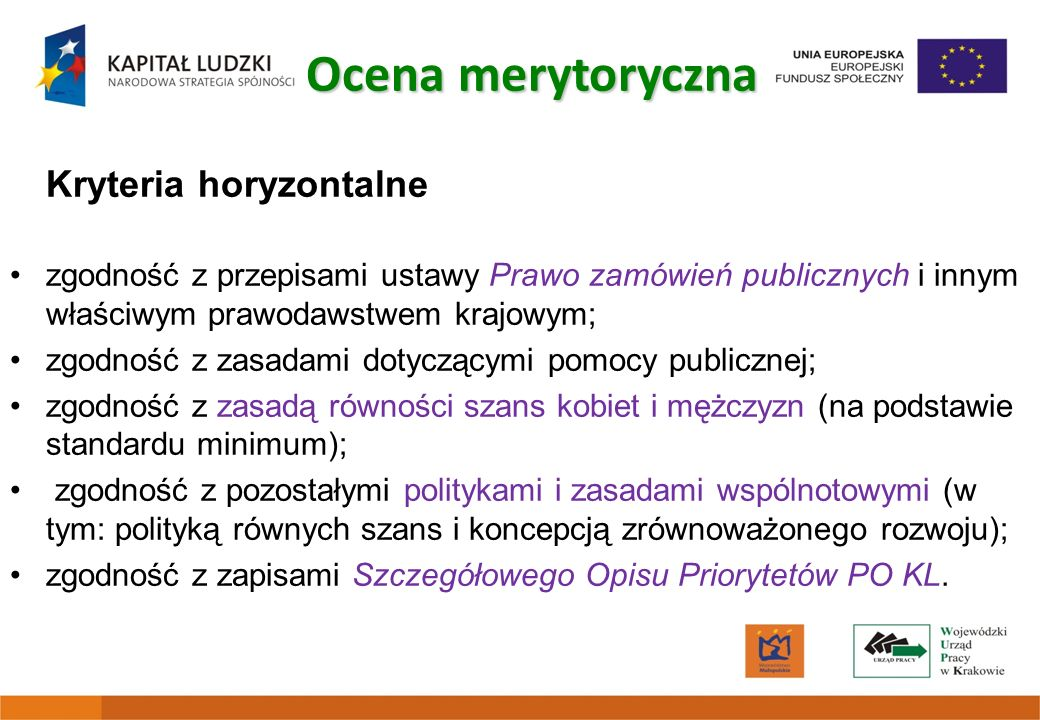 Ocena merytoryczna Kryteria horyzontalne