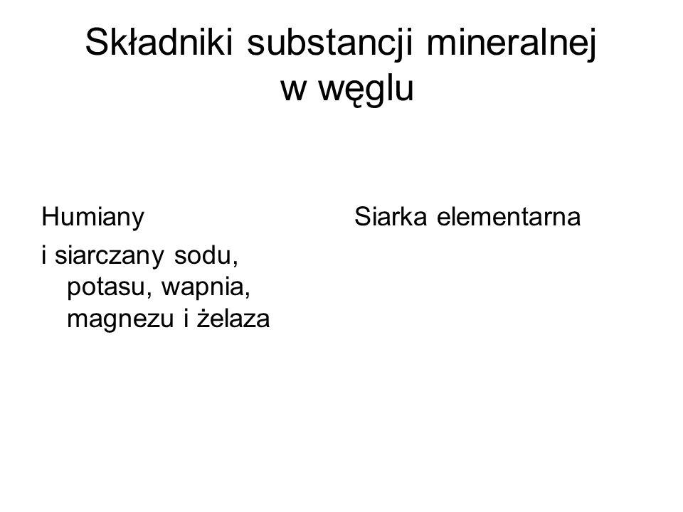 Składniki substancji mineralnej w węglu