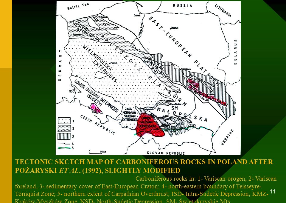 TECTONIC SKCTCH MAP OF CARBONIFEROUS ROCKS IN POLAND AFTER POŻARYSKI ET AL.