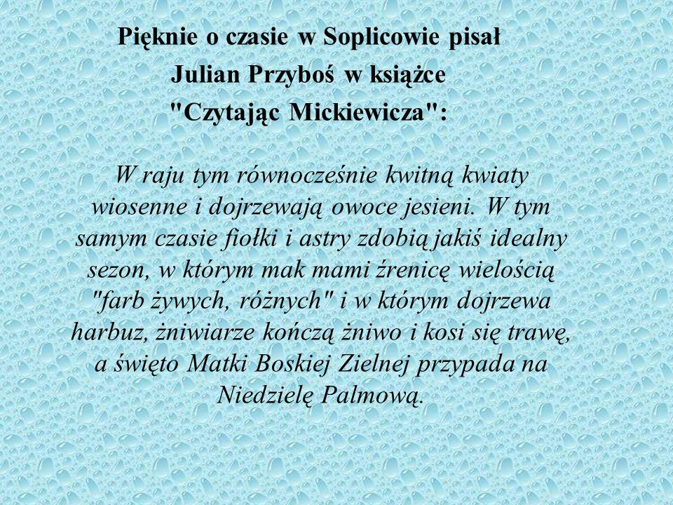 Pięknie o czasie w Soplicowie pisał Julian Przyboś w książce Czytając Mickiewicza : W raju tym równocześnie kwitną kwiaty wiosenne i dojrzewają owoce jesieni.