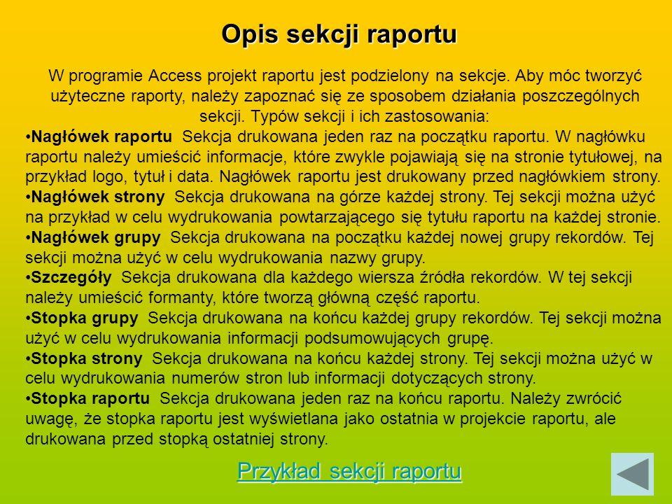 Opis sekcji raportu Przykład sekcji raportu