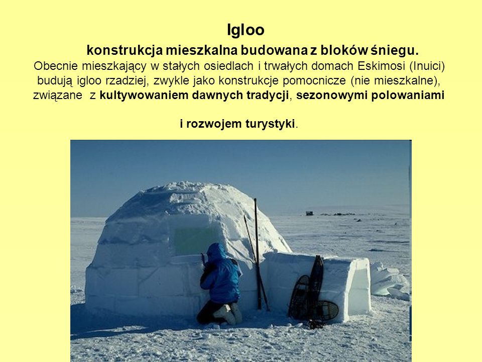 Igloo konstrukcja mieszkalna budowana z bloków śniegu