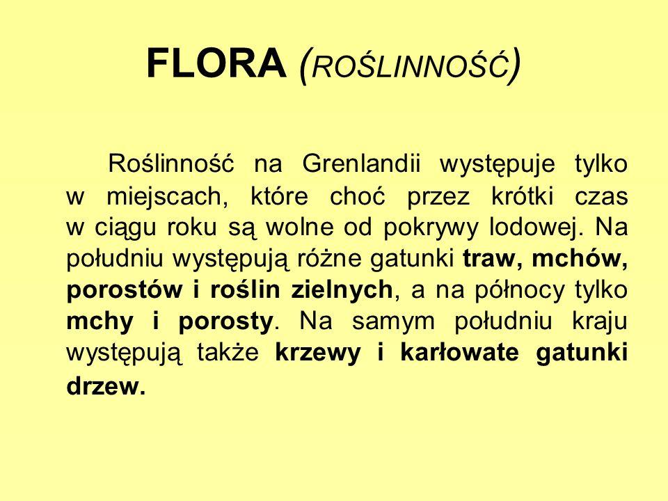 FLORA (ROŚLINNOŚĆ)