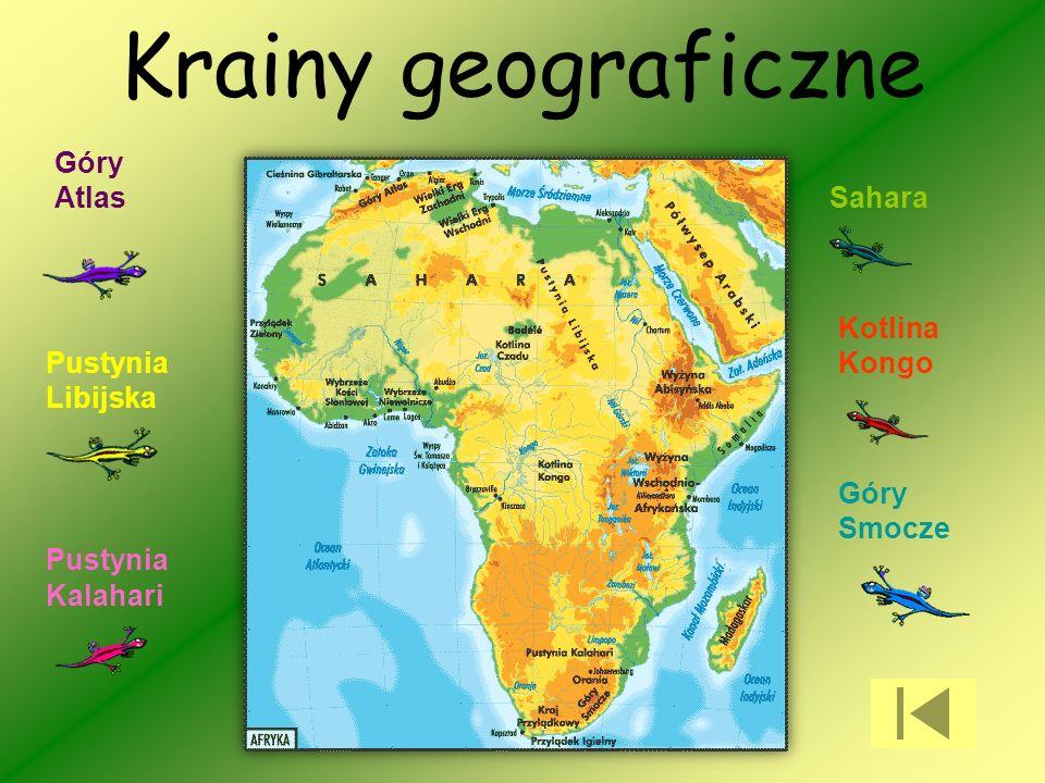 Krainy geograficzne Góry Atlas Sahara Kotlina Kongo Pustynia Libijska