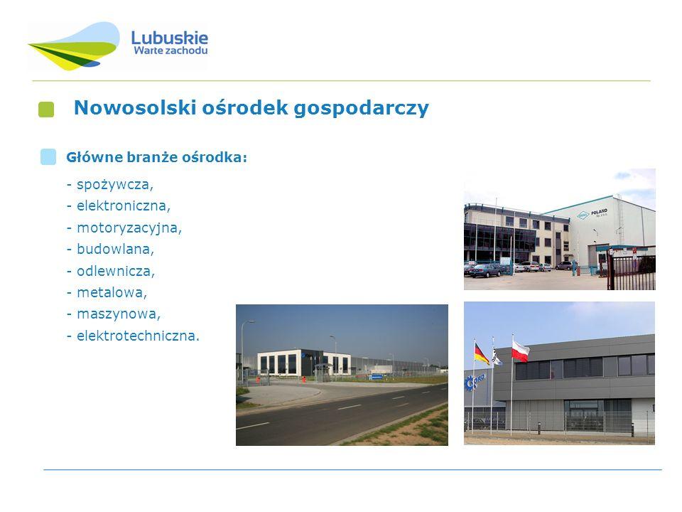 Nowosolski ośrodek gospodarczy