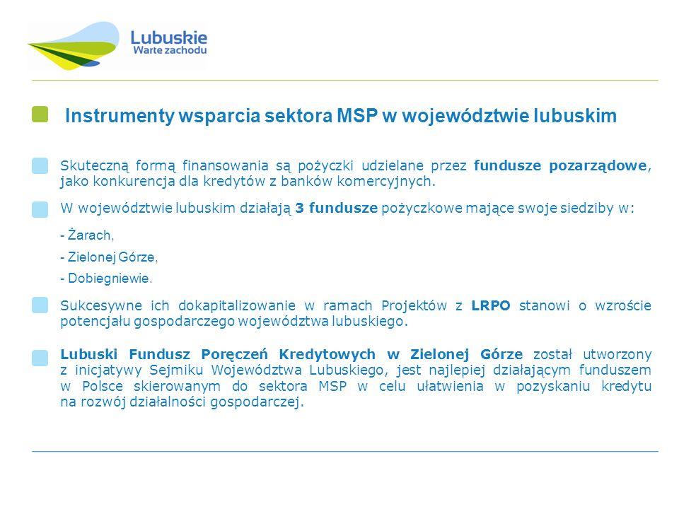 Instrumenty wsparcia sektora MSP w województwie lubuskim
