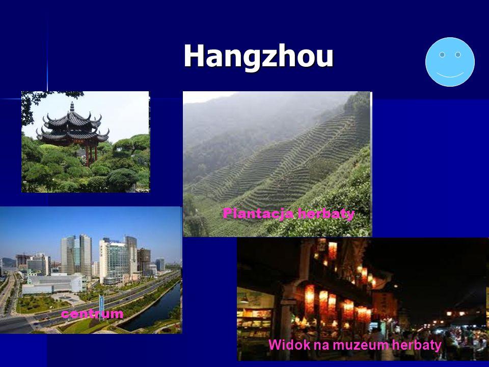 Hangzhou Plantacja herbaty centrum Widok na muzeum herbaty