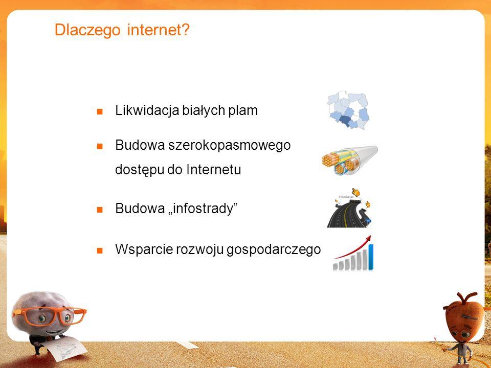 Dlaczego internet Likwidacja białych plam