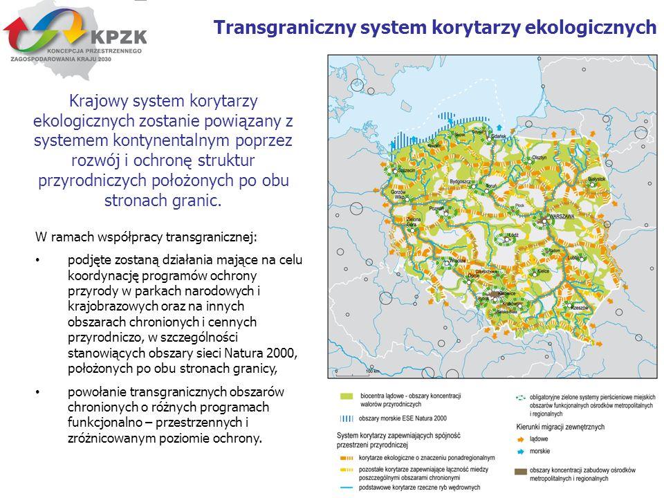 Transgraniczny system korytarzy ekologicznych
