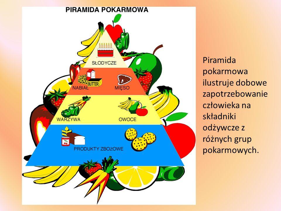 Piramida pokarmowa ilustruje dobowe zapotrzebowanie człowieka na składniki odżywcze z różnych grup pokarmowych.