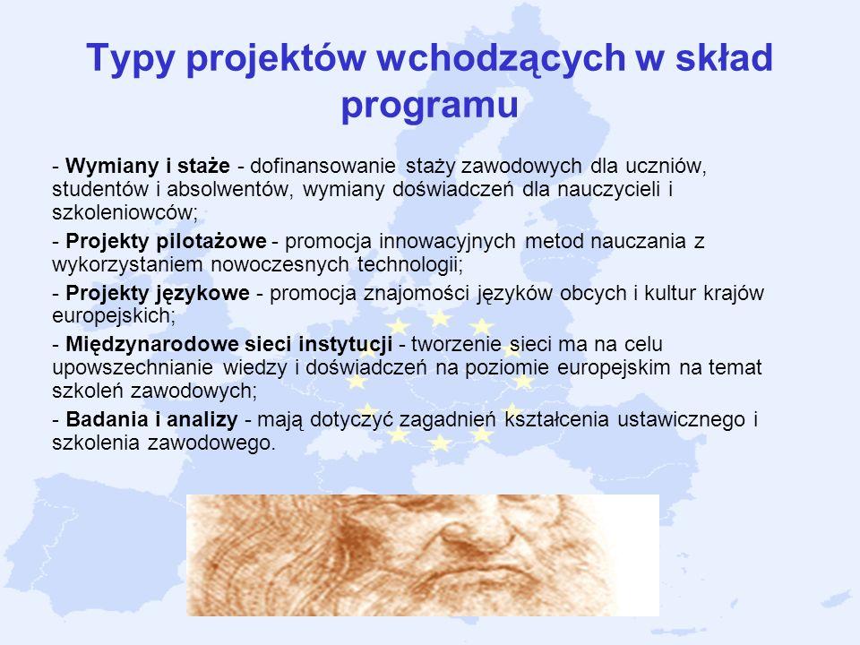 Typy projektów wchodzących w skład programu