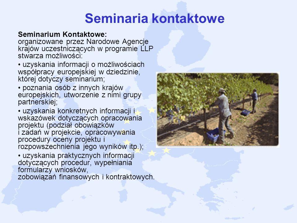Seminaria kontaktowe Seminarium Kontaktowe: organizowane przez Narodowe Agencje krajów uczestniczących w programie LLP stwarza możliwości: