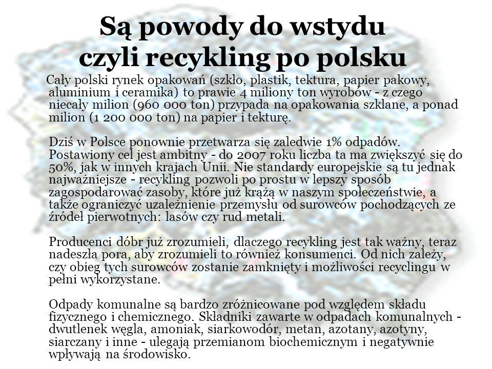 Są powody do wstydu czyli recykling po polsku