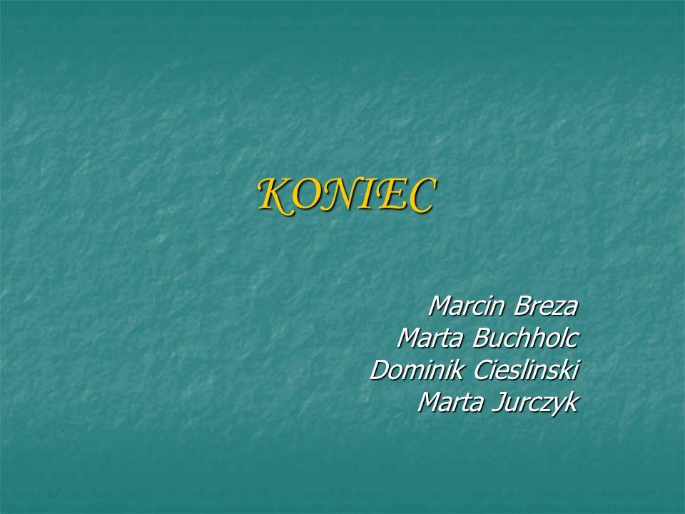 Marcin Breza Marta Buchholc Dominik Cieslinski Marta Jurczyk