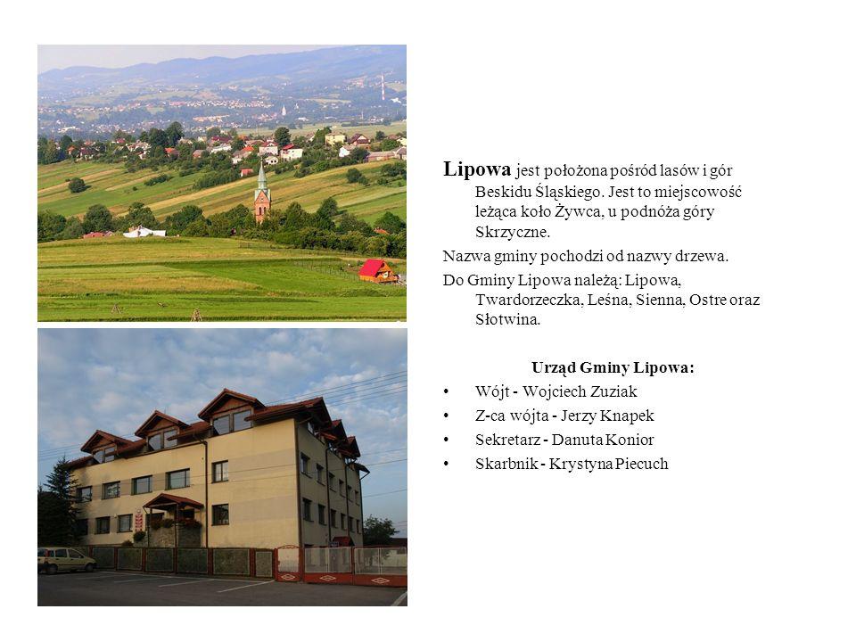 Lipowa jest położona pośród lasów i gór Beskidu Śląskiego
