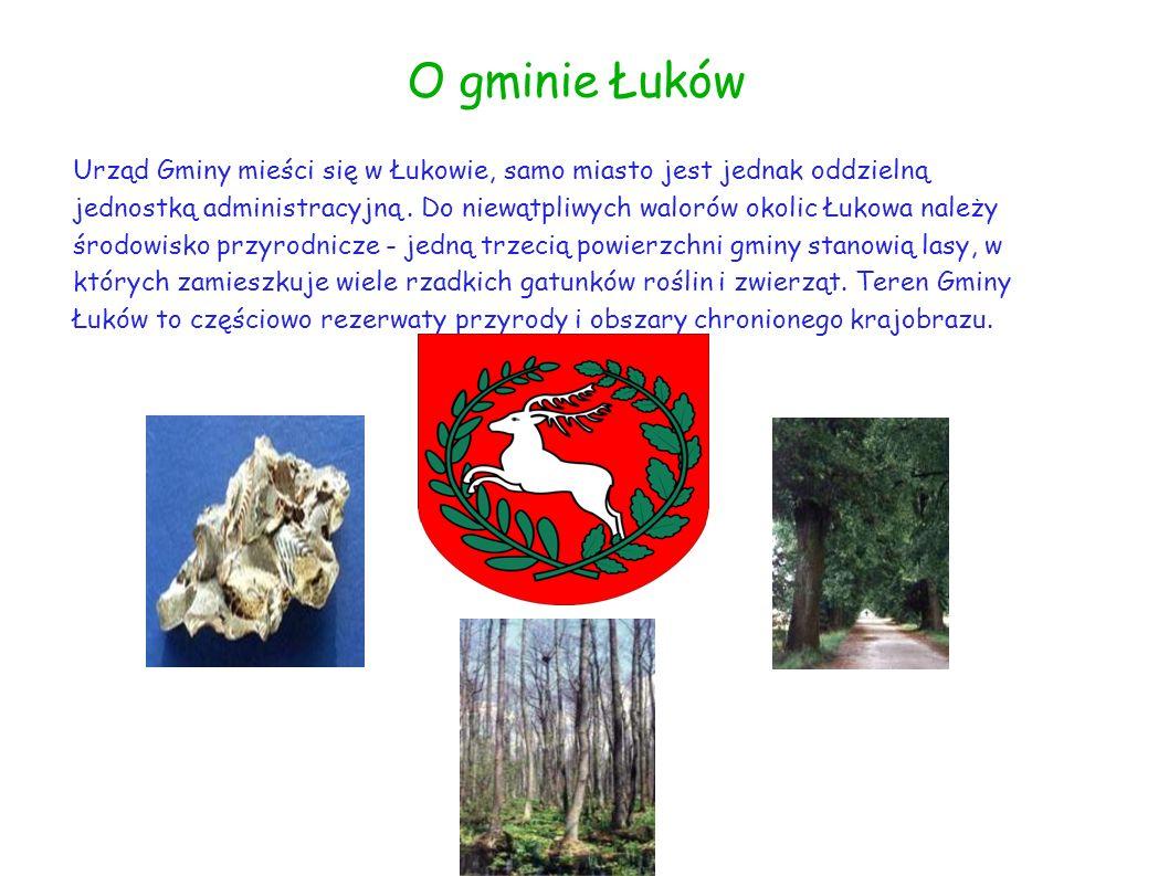 O gminie Łuków