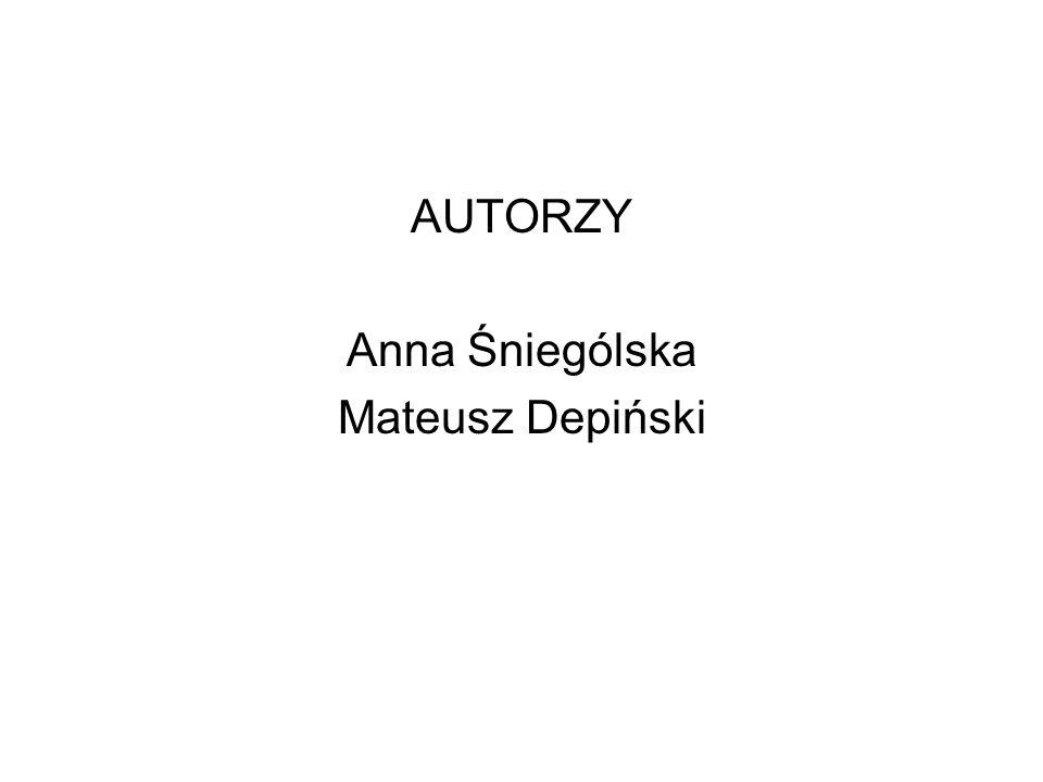 AUTORZY Anna Śniególska Mateusz Depiński