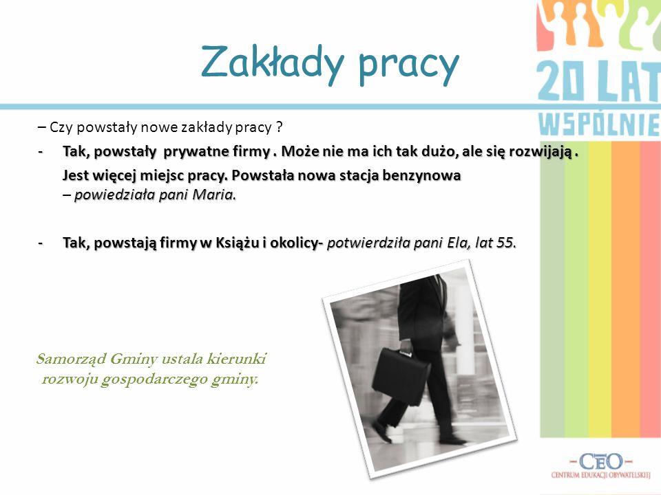 Samorząd Gminy ustala kierunki rozwoju gospodarczego gminy.