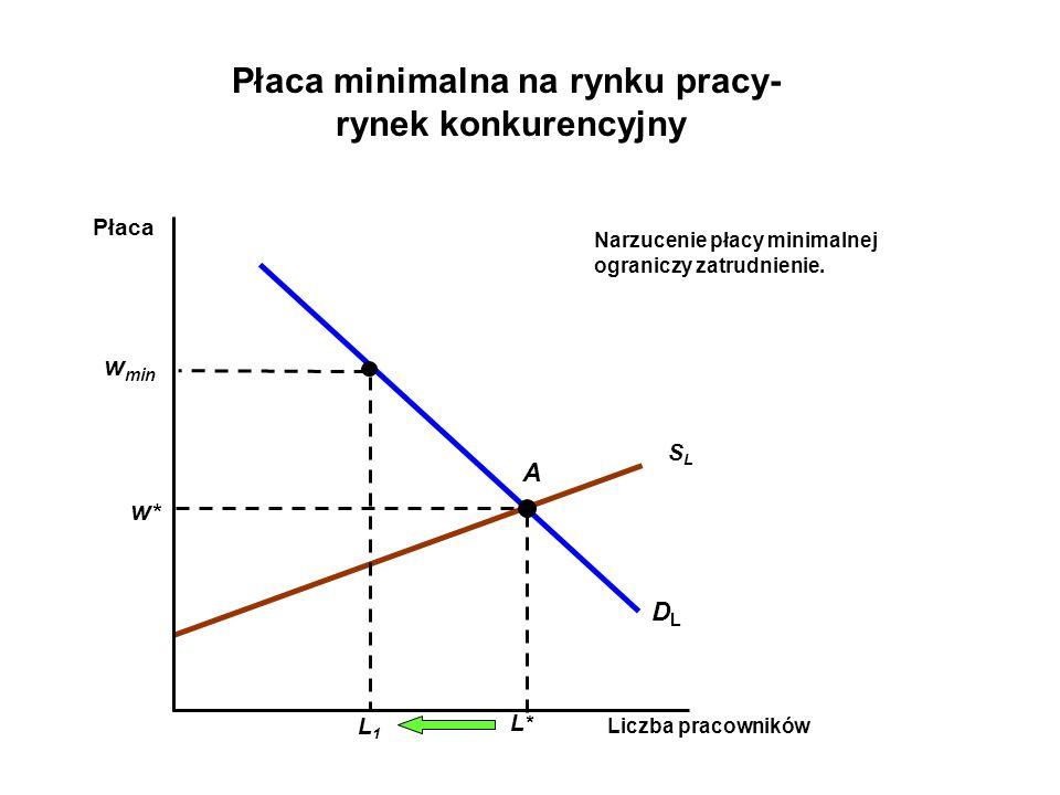 Płaca minimalna na rynku pracy-