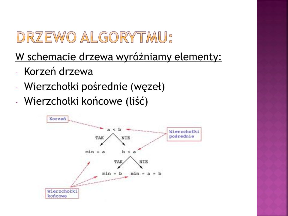 Drzewo algorytmu: W schemacie drzewa wyróżniamy elementy: