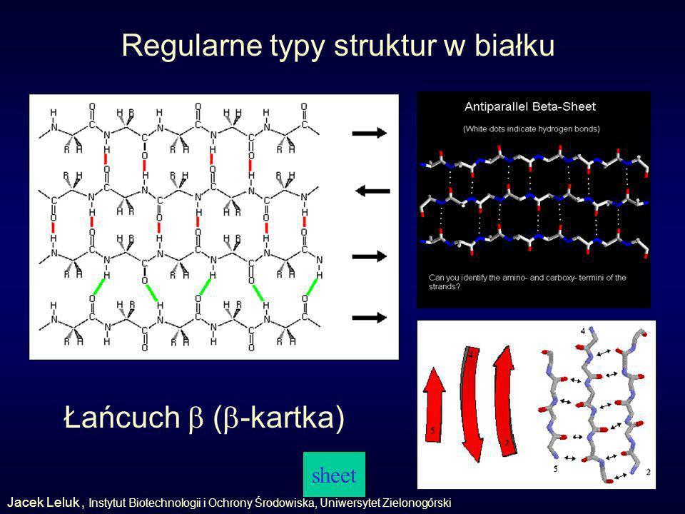 Regularne typy struktur w białku