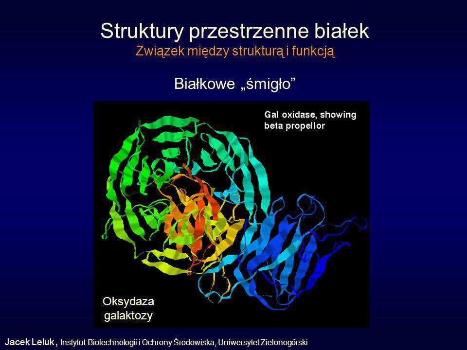Struktury przestrzenne białek