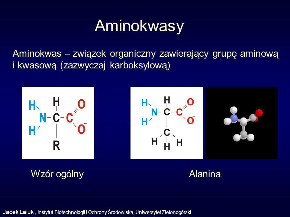 Aminokwasy Aminokwas – związek organiczny zawierający grupę aminową