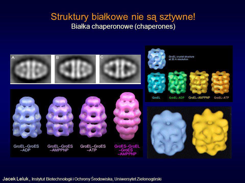 Struktury białkowe nie są sztywne!