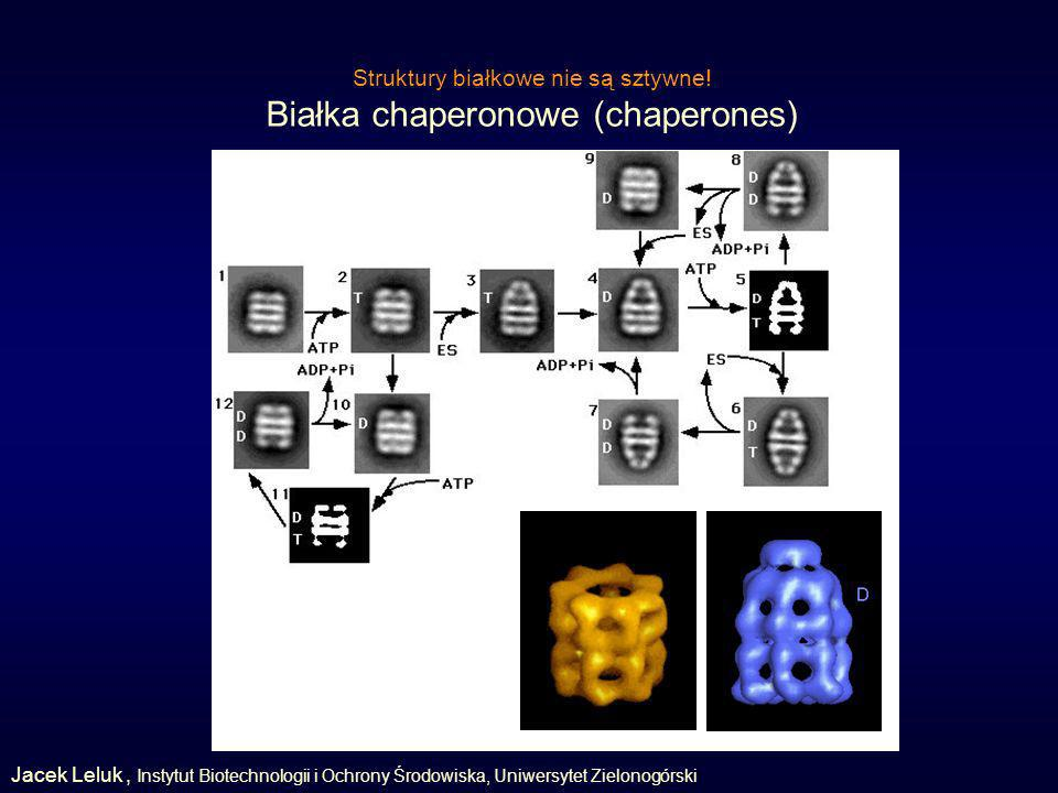 Białka chaperonowe (chaperones)