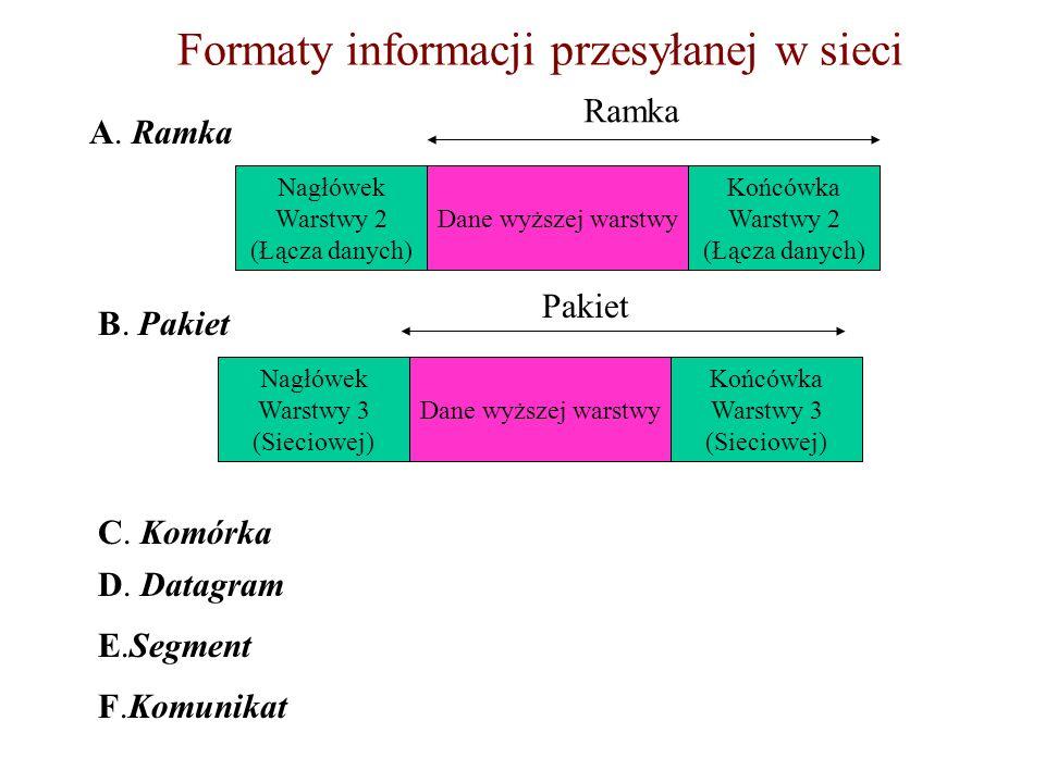 Formaty informacji przesyłanej w sieci