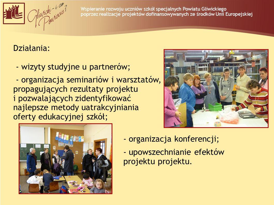 - wizyty studyjne u partnerów; - organizacja seminariów i warsztatów,
