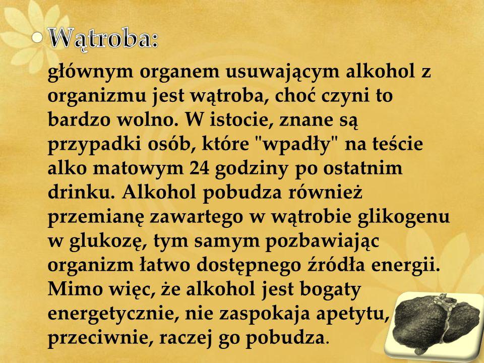Wątroba:
