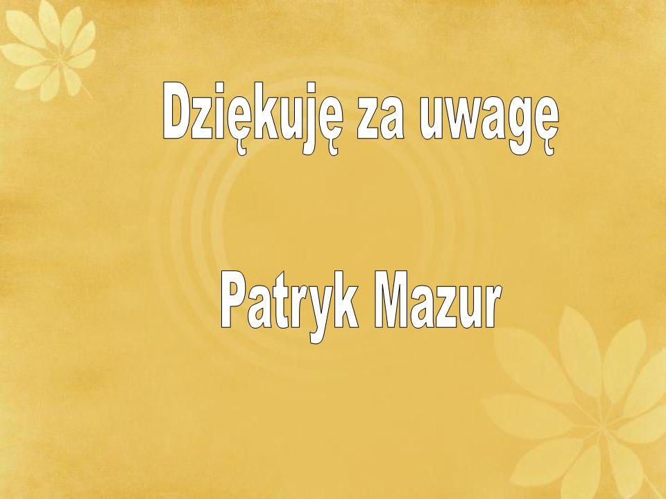 Dziękuję za uwagę Patryk Mazur